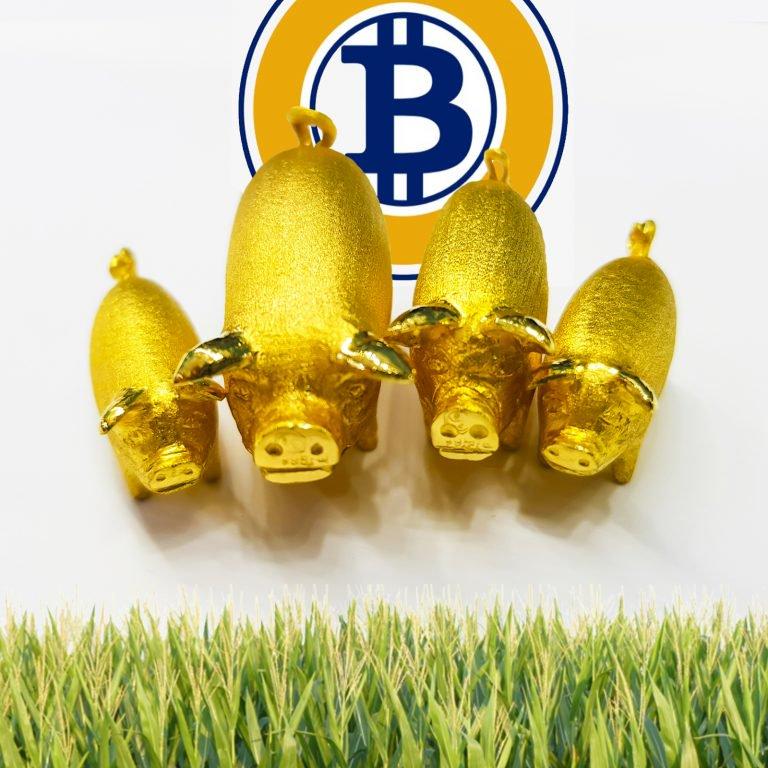 Bitcoin gold developer under scrutiny for allegedly hiding mining bitcoin gold developer under scrutiny for allegedly hiding mining code ccuart Gallery